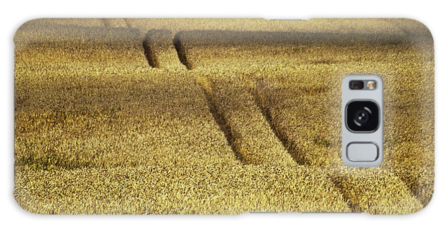 Heiko Galaxy S8 Case featuring the photograph Cornfield by Heiko Koehrer-Wagner