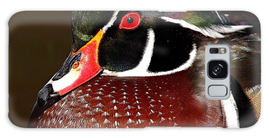 Duck Galaxy S8 Case featuring the photograph Courtship Colors Of A Wood Duck Drake by Max Allen