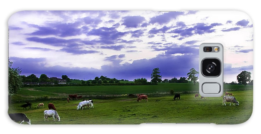 Countryside Galaxy S8 Case featuring the photograph Cow Field by Svetlana Sewell