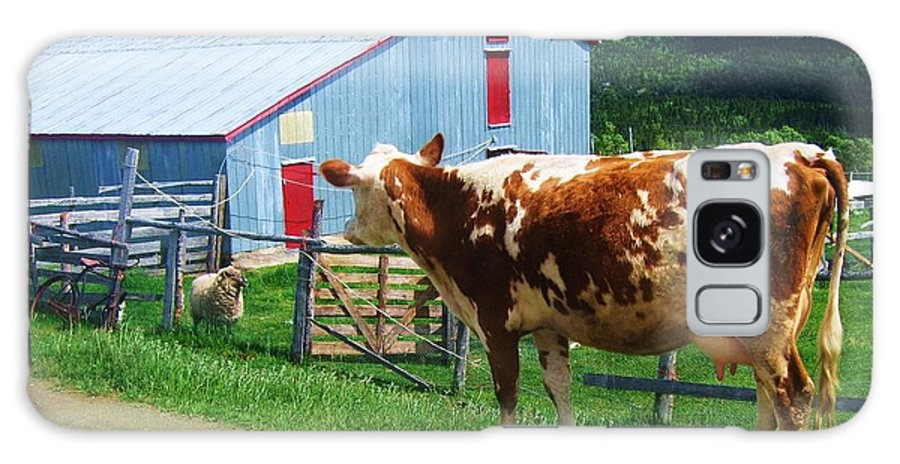 Photograph Cow Sheep Barn Field Newfoundland Galaxy S8 Case featuring the photograph Cow Sheep And Bicycle by Seon-Jeong Kim