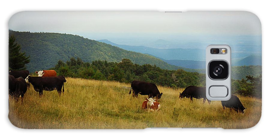 Doughton Park Galaxy S8 Case featuring the digital art Cows At Doughton Park by Valerie Reeves