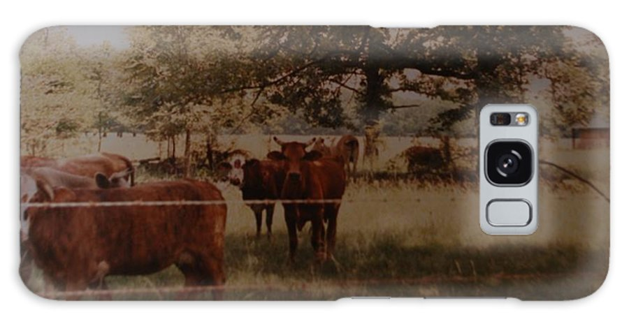 Cows Galaxy S8 Case featuring the photograph Cows by Rob Hans