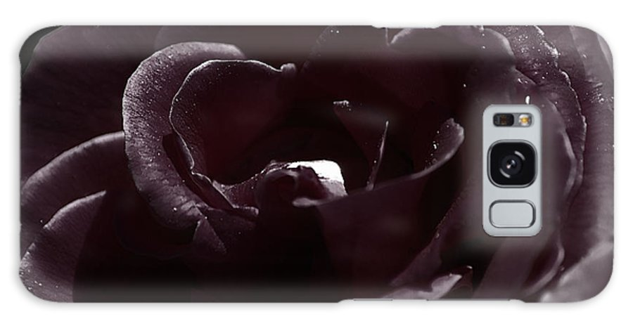 Clay Galaxy Case featuring the photograph Cranberry Rose by Clayton Bruster