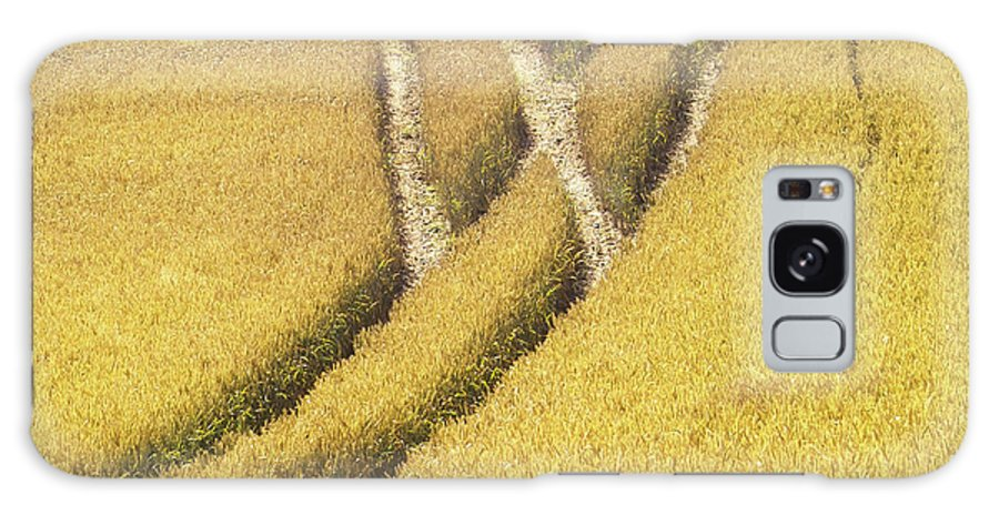Europe Galaxy S8 Case featuring the photograph Crossed Lanes On Cornfield by Heiko Koehrer-Wagner