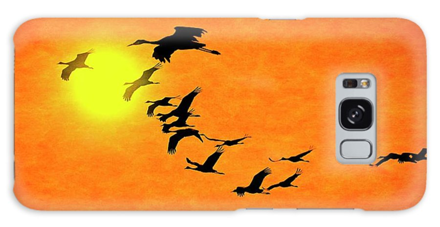 Nature Galaxy Case featuring the photograph Crossing the Sun, Sandhill Cranes by Zayne Diamond Photographic