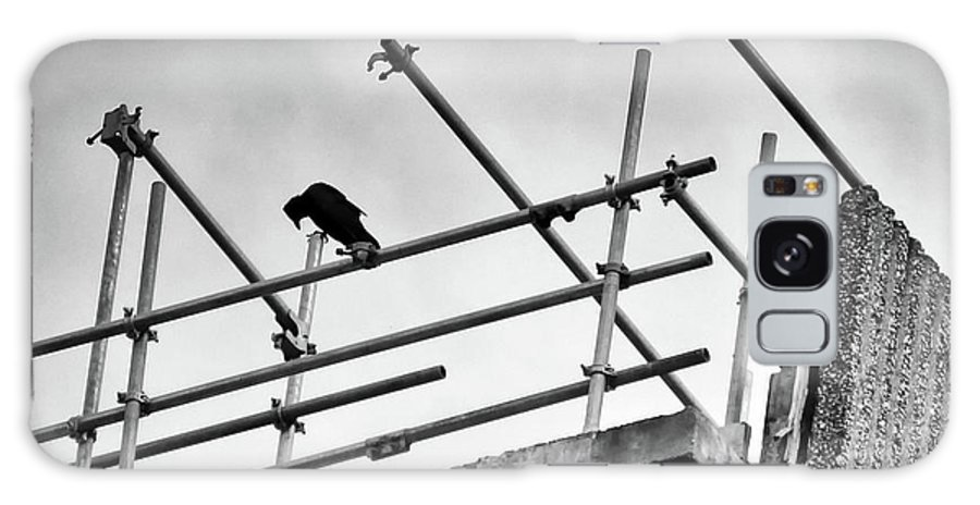 Crow Staring Down On A Construction Site. Galaxy S8 Case featuring the photograph Crow Watches Over by Philip Openshaw