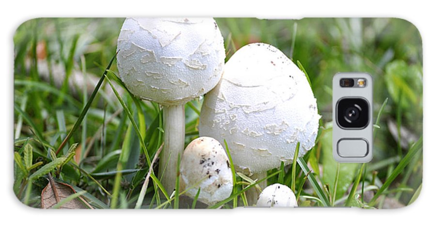 Toadstools Galaxy S8 Case featuring the photograph Cumberland Toadstools by Debra White
