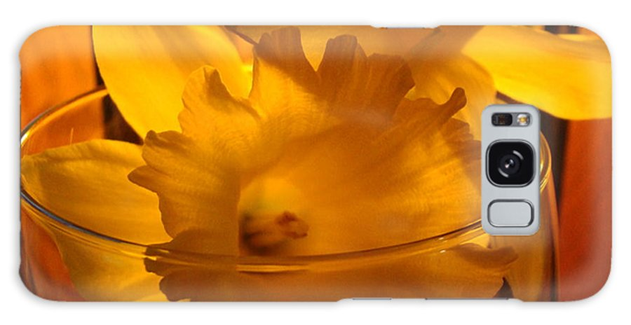 �daffodils Artwork� Galaxy Case featuring the photograph Daffodiil Flowers Evening Glow 9 Contemporary Modern Art Print Giclee by Baslee Troutman
