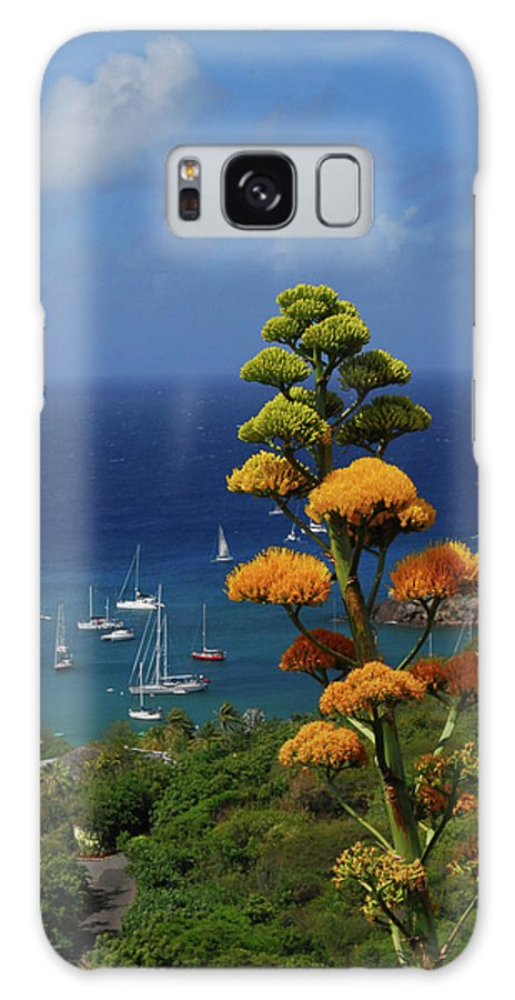 Caribbean Islands Galaxy S8 Case featuring the photograph Daggers Los by Gary Wonning