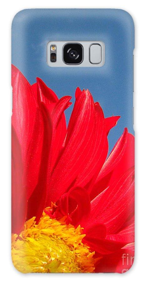 Dahlia Galaxy S8 Case featuring the photograph Dahlia by Amanda Barcon