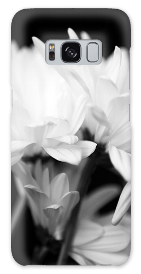 Floral Galaxy S8 Case featuring the photograph Daises In Black And White by Ayesha Lakes