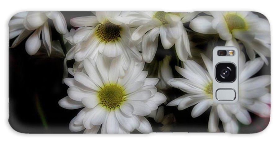 Daisies Galaxy S8 Case featuring the photograph Daisies 1 by Kristalin Davis