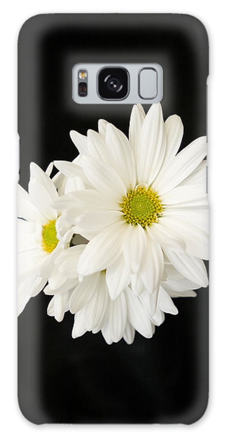 Floral Galaxy S8 Case featuring the photograph Daisies by Ayesha Lakes