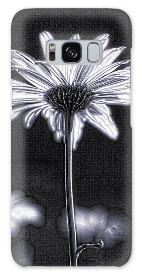 Black & White Galaxy S8 Case featuring the photograph Daisy by Tony Cordoza