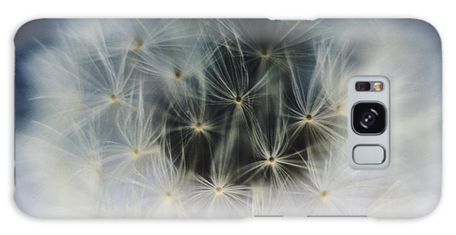 Abstract Galaxy S8 Case featuring the photograph Dandelion Seeds by Larry Dale Gordon - Printscapes