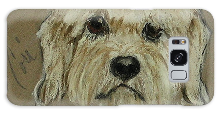 Dandie Dinmont Terrier Galaxy S8 Case featuring the drawing Dandie by Cori Solomon