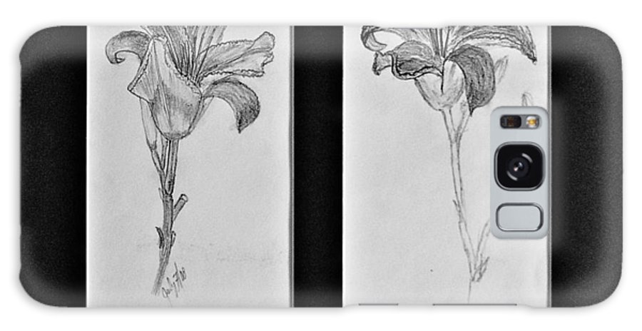 Pencil Sketches Galaxy Case featuring the drawing Day Lilies by Peggy King