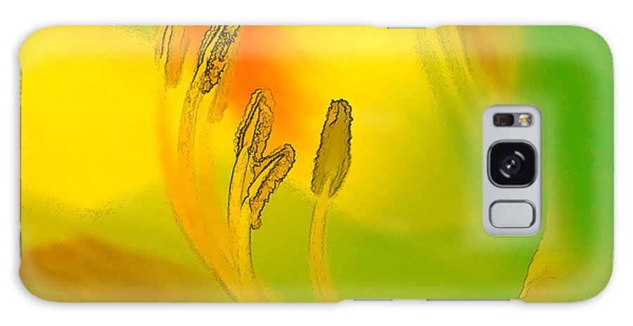 Flower Galaxy Case featuring the digital art Daylily In Morning Light by Ches Black