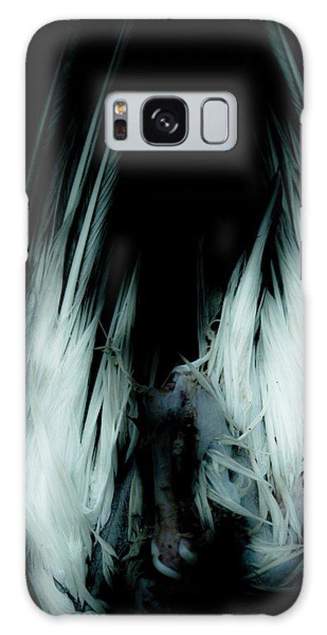 Bird Galaxy S8 Case featuring the photograph Dead Bird Grey by Grebo Gray