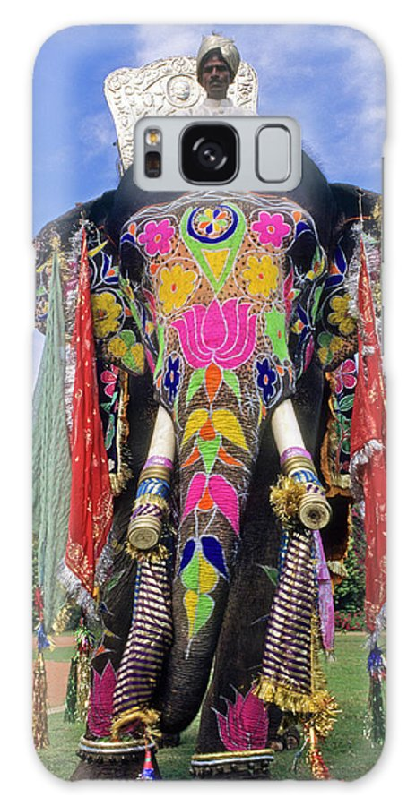 Asia Galaxy S8 Case featuring the photograph Decorated Indian Elephant by Michele Burgess