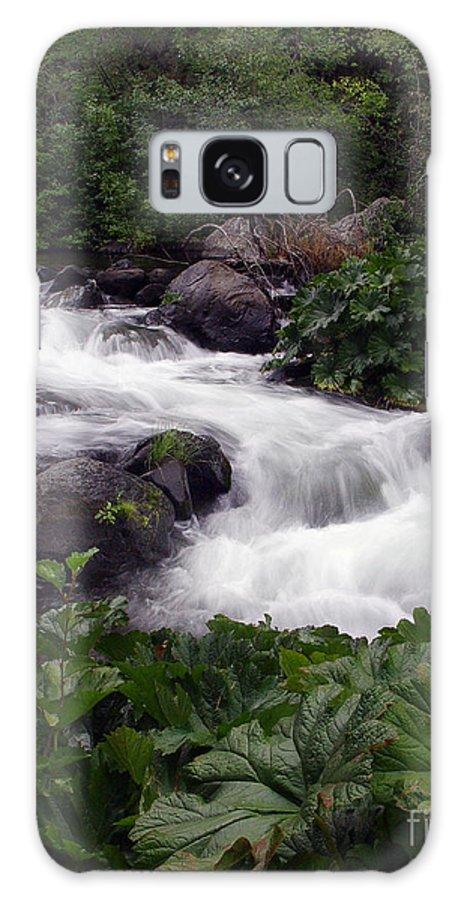 Creek Galaxy S8 Case featuring the photograph Deer Creek 07 by Peter Piatt