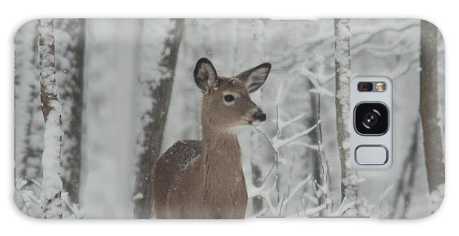 Deer Galaxy S8 Case featuring the photograph Deer In The Snow by Douglas Barnett