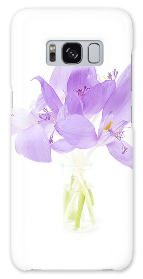 Delicate Galaxy S8 Case featuring the photograph Delicate by Gabriela Insuratelu