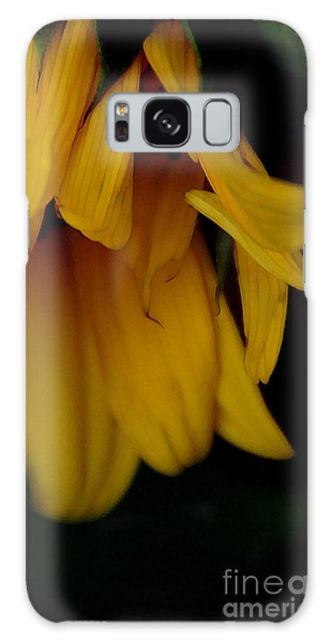 Sunflower Galaxy S8 Case featuring the photograph Demure by Linda Shafer