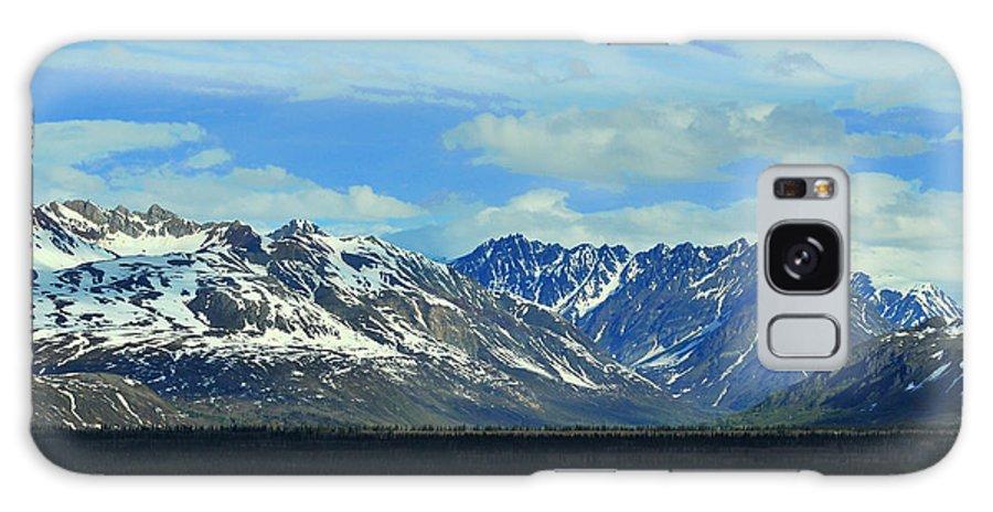 Denali Galaxy Case featuring the photograph Denali Valley by Keith Gondron