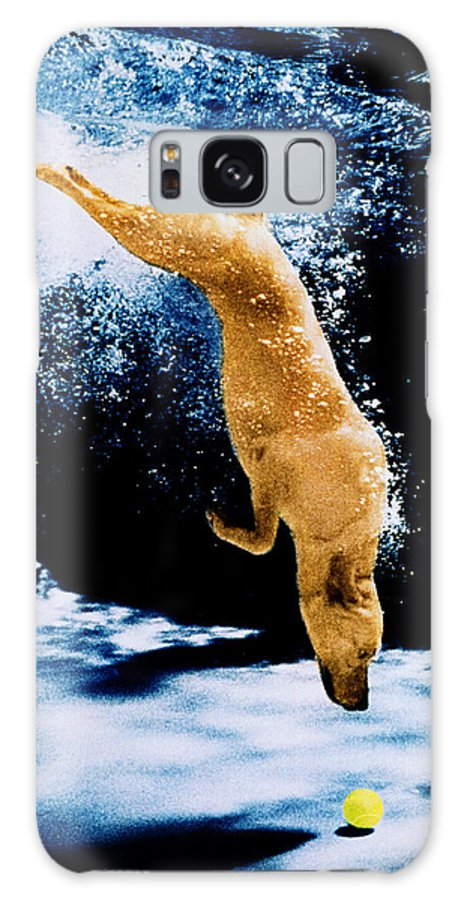 Pet Galaxy S8 Case featuring the photograph Diving Dog Underwater by Jill Reger