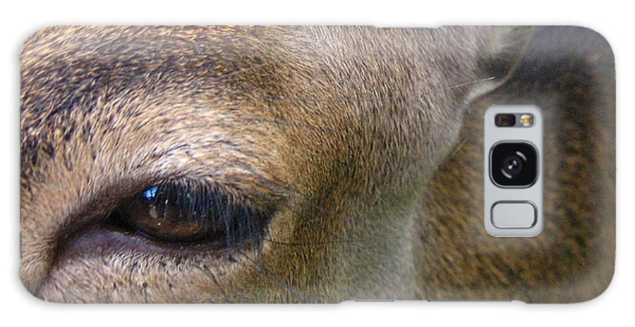 Doe Galaxy Case featuring the photograph Doe by Melissa Parks