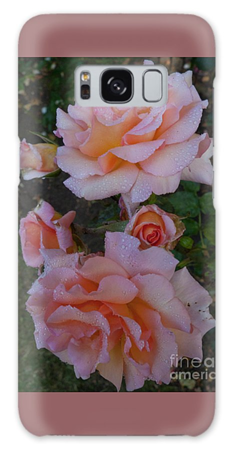 Nature Galaxy S8 Case featuring the photograph Does Roses Has Thorns Or Does Thorns Has Roses by Xabi Lobo