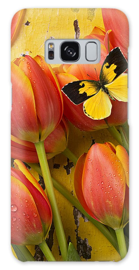 Butterfly Galaxy S8 Case featuring the photograph Dogface Butterfly And Tulips by Garry Gay