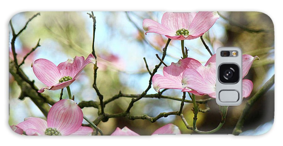 Dogwood Galaxy S8 Case featuring the photograph Dogwood Flowers Pink Dogwood Tree Landscape 9 Giclee Art Prints Baslee Troutman by Baslee Troutman