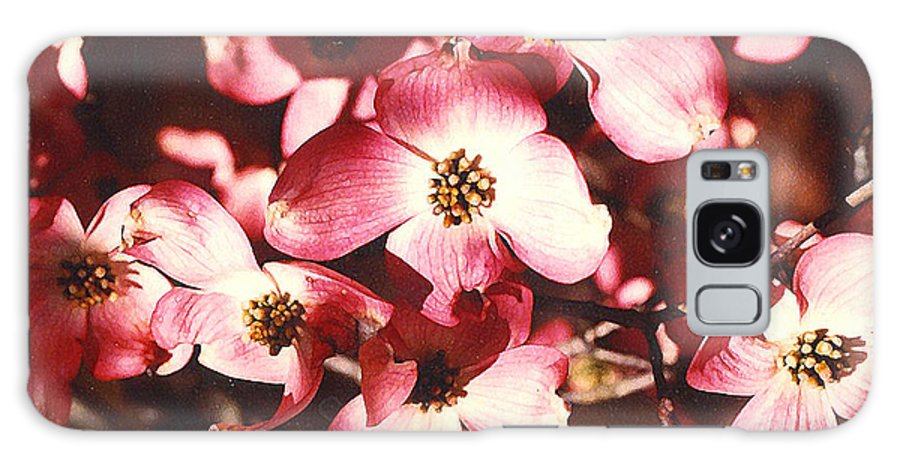 Dogwood Galaxy S8 Case featuring the photograph Dogwood Harmony by Nancy Mueller