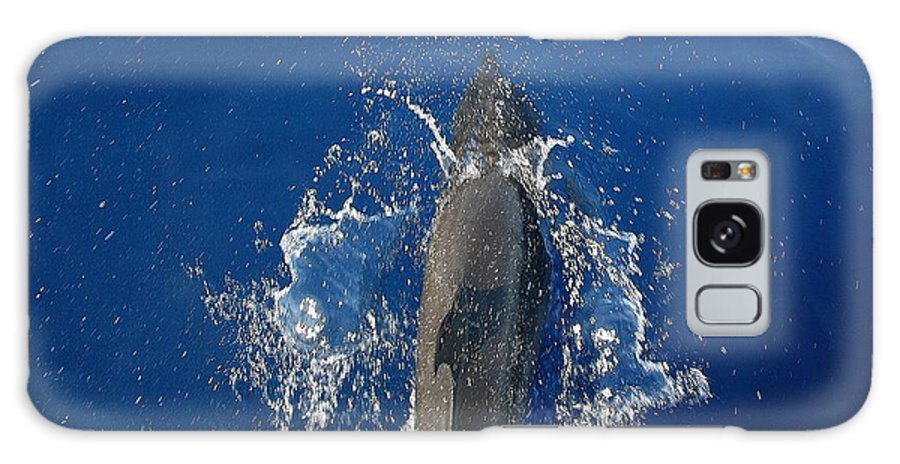 Dolphin Galaxy S8 Case featuring the photograph Dolphin by J R Seymour