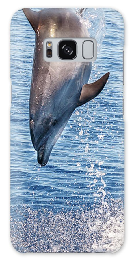 Dolphin Galaxy S8 Case featuring the photograph Dolphin Jump by Cory Huchkowski