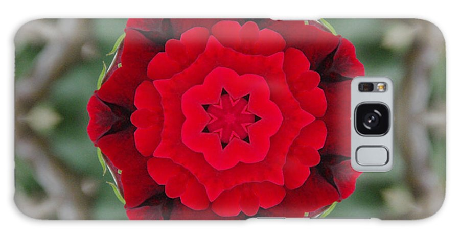 Don Juan Galaxy S8 Case featuring the photograph Don Juan Rose Poppies Kaleidoscope by Robyn Stacey