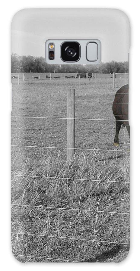 Rural Galaxy Case featuring the photograph Double Post by Dylan Punke
