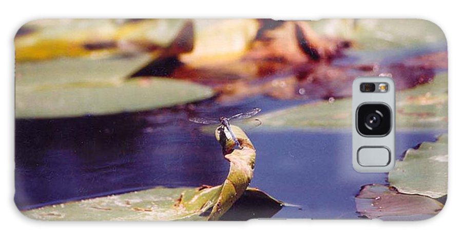 Insect Galaxy S8 Case featuring the photograph Dragon Fly by Margaret Fortunato