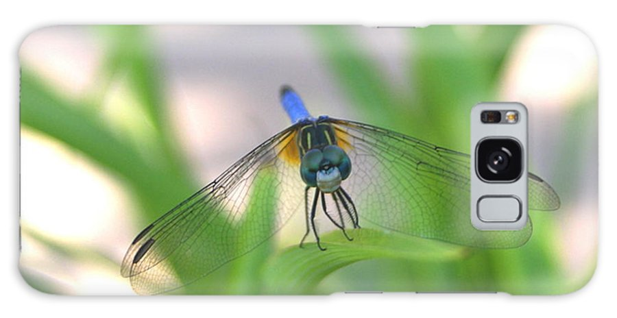 Dragon Fly Galaxy S8 Case featuring the photograph Dragon Fly Personality by Debbie May