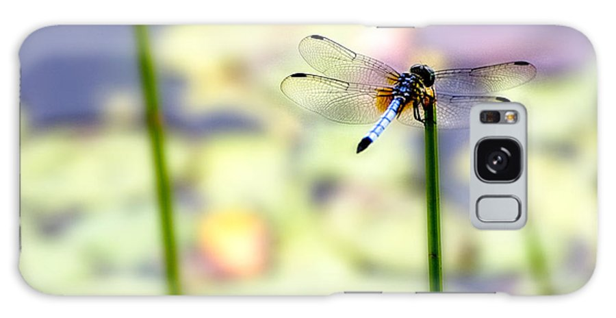 Dragon Fly Galaxy Case featuring the photograph Dragon On The Pond by Ches Black