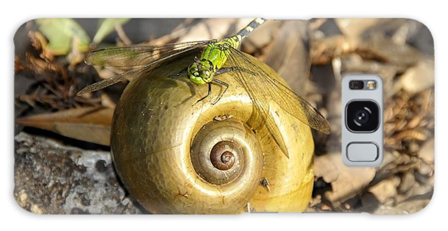 Dragonfly Galaxy S8 Case featuring the photograph Dragonfly On Snail by David Lee Thompson