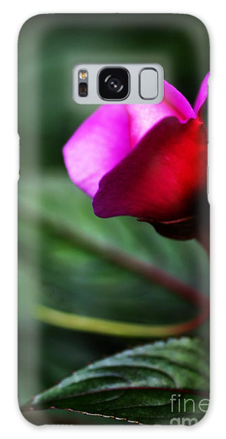 Rose Galaxy S8 Case featuring the photograph Dreams Realized by Linda Shafer