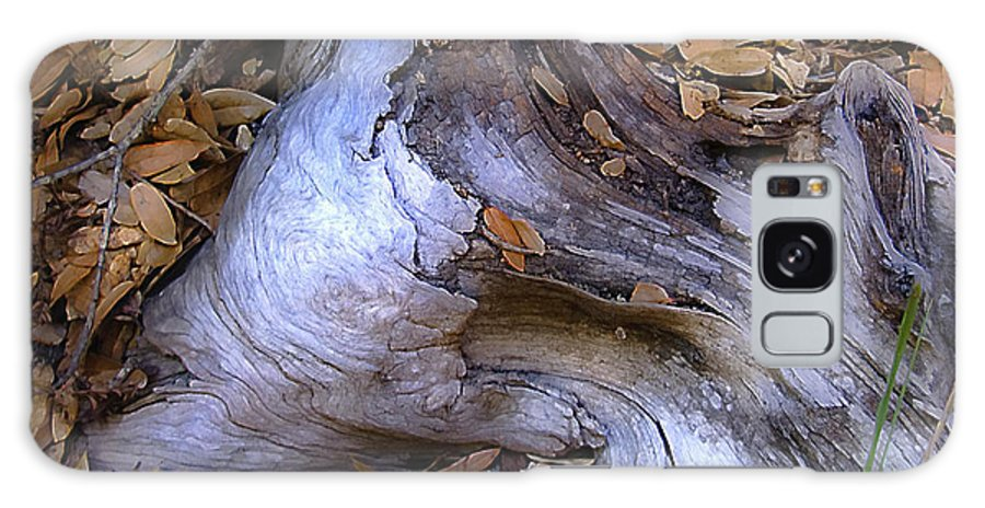 Landscape Galaxy S8 Case featuring the photograph Driftwood In Lahonda by Karen W Meyer