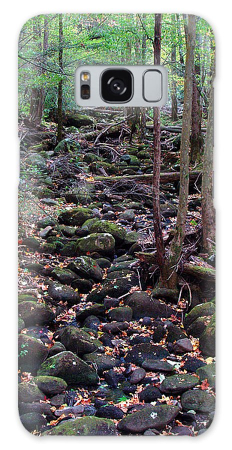 River Galaxy Case featuring the photograph Dry River Bed- Autumn by Nancy Mueller
