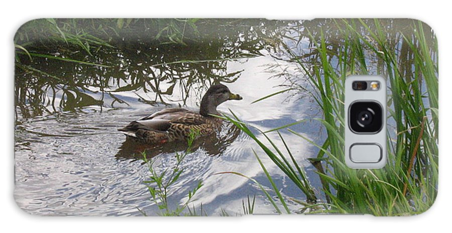 Duck Galaxy Case featuring the photograph Duck Swimming In Stream by Melissa Parks