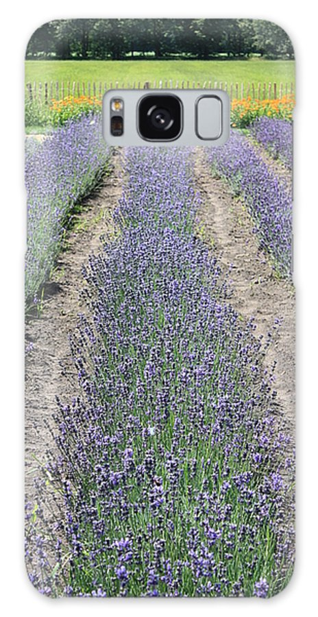 Lavender Galaxy S8 Case featuring the photograph Dutch Lavender Field by Carol Groenen