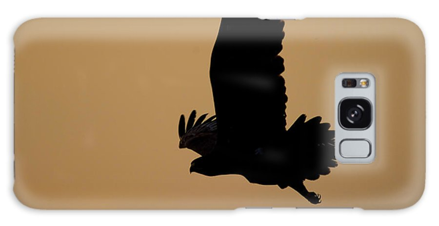 Eagle Galaxy S8 Case featuring the photograph Eagle At Sunset by Cliff Norton