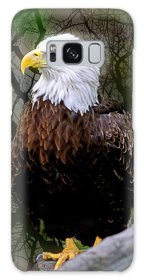 Eagle Galaxy S8 Case featuring the photograph Eagle In The Night by Janet Argenta